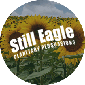 Still Eagle Logo