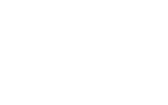 Party Well